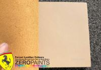 Interior Colour Paints - 60ml